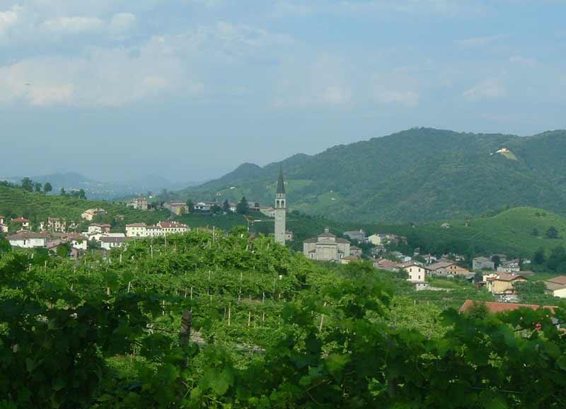 Bepin de Eto Prosecco Spumante Millisimato DOCG Valdobbiadene en de Prosecco wijngaarden in Valdobbiadene